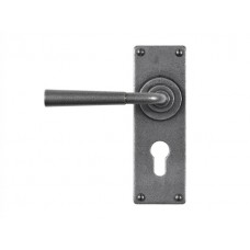 Forged Steel Lever Handle on Euro Lock Backplate